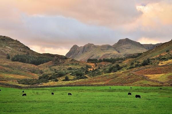 Cumbrian Landscape by bart_hoga