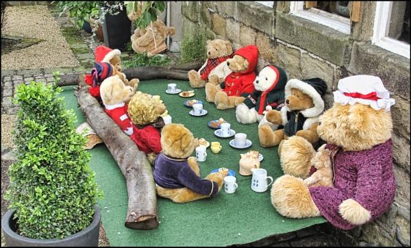 Teddy Bear,s Picnic. by stocksbridge