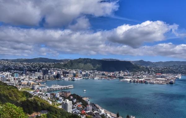 Wellington by ColleenA