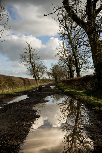 Wet Lane by feen96