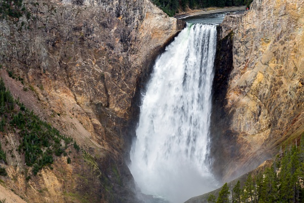 View of Lower Yellowstone Falls by Phil_Bird