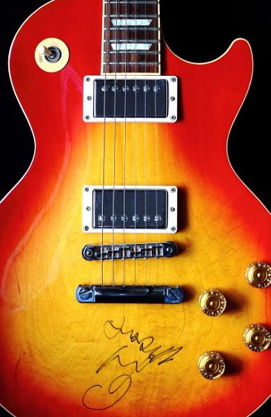 Guitar Portrait by Bigdenbo
