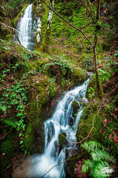 Waterfall around Lake Vyrnwy by sprock