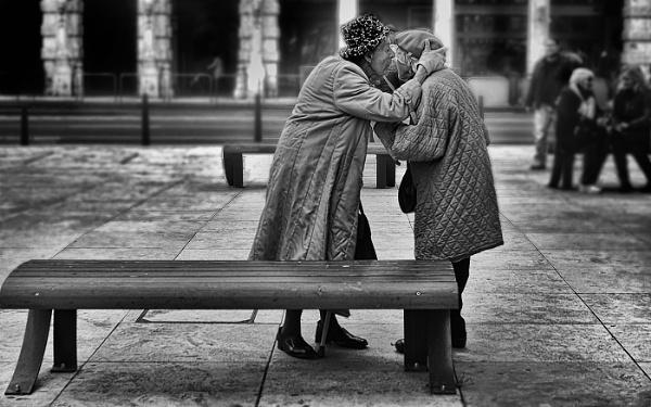 Old Friends by judidicks