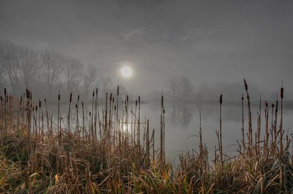 Lifting Mist by carper123