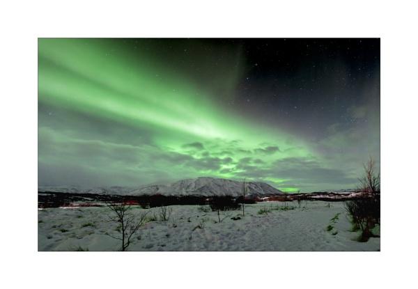 Northern Lights by MossyOak