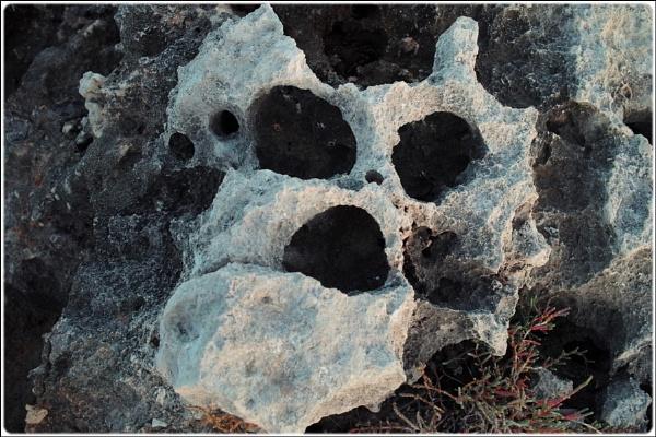 stone skull by FabioKeiner