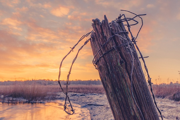Wooden fence post with barb wire by Polarpx