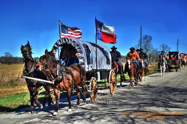 Southeastern Trailride Assoc. by PetesPix