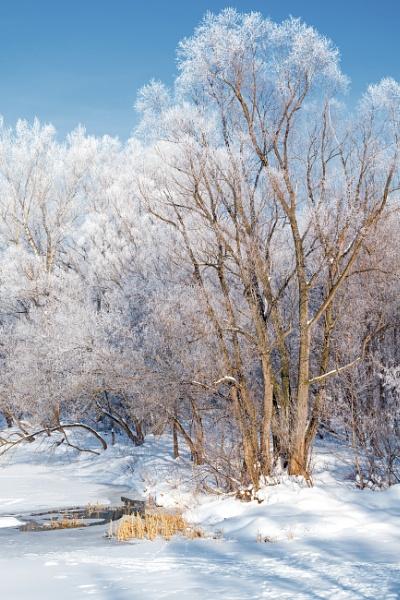 winter tale by PhotoEarl