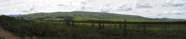 Alaska #66 by handlerstudio