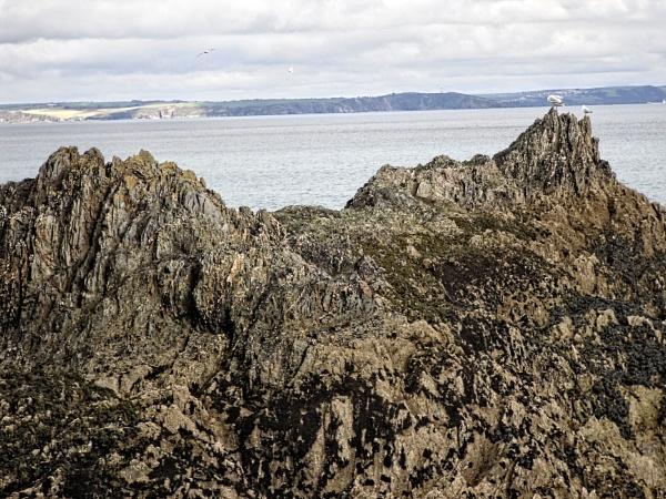 On the rocks by eddiemat