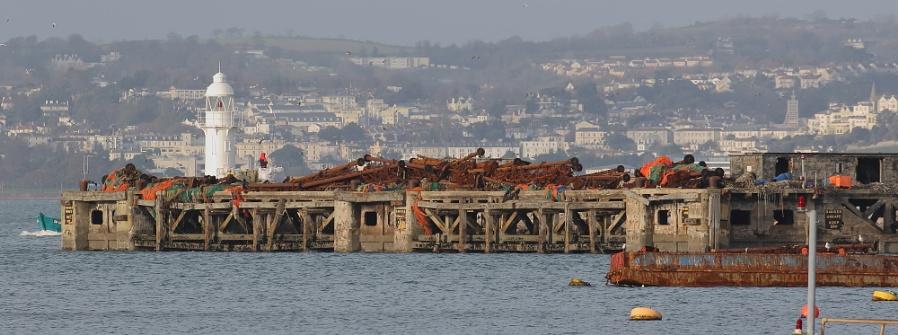 Brixham and Trawlers