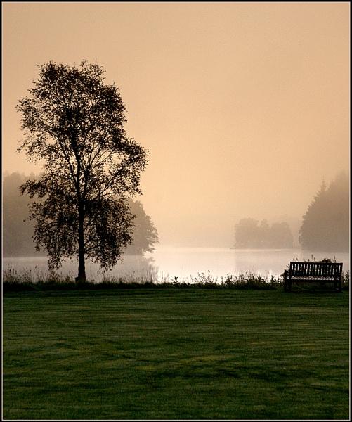 A Misty Sunrise by fentiger