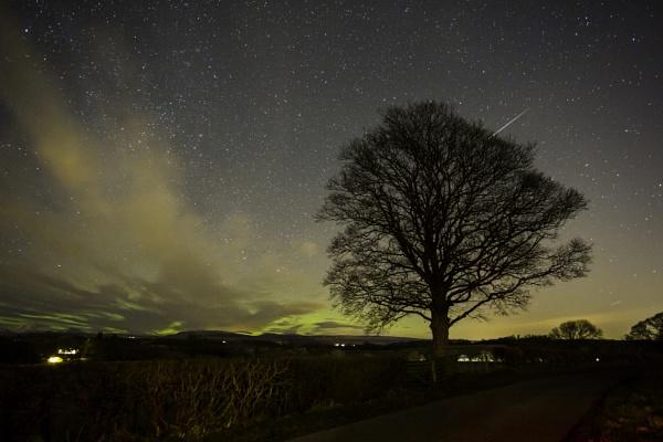 Aurora by Pricegrah