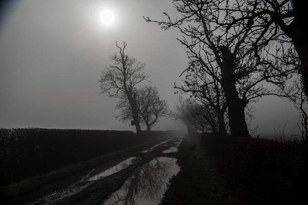 Sun Breaking Through by feen96