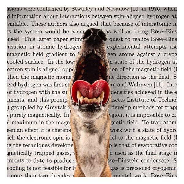 Greyhound by chrispethick