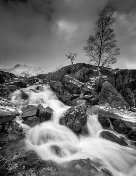 Winter Rush by Brenty