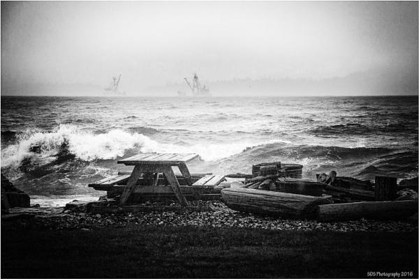 Yesterdays High Winds by Daisymaye
