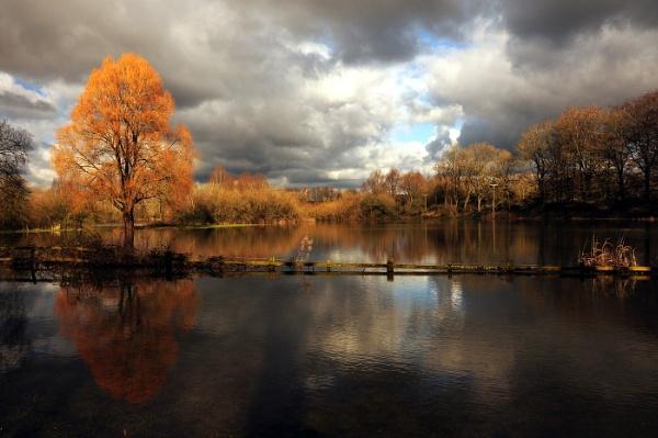 Winter floods by Myles2008