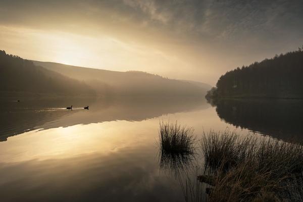 Morning Calm by Trevhas