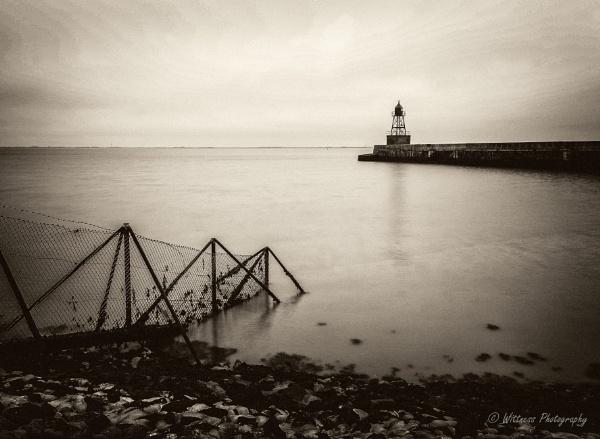 Grey & Grey by phonocar