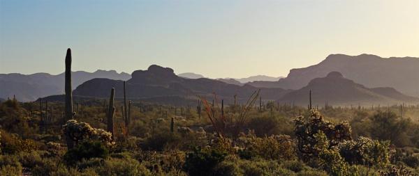Former/future ocean floor: current Arizona desert by AudiusLoudus