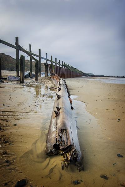 Beach wood by matthewwheeler