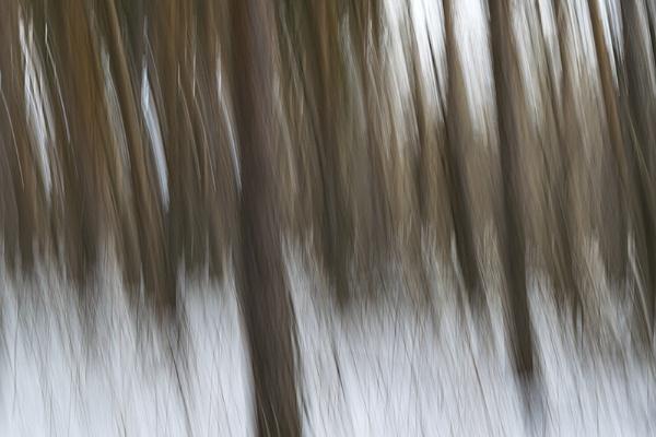 Psychodelia by PhotoEarl
