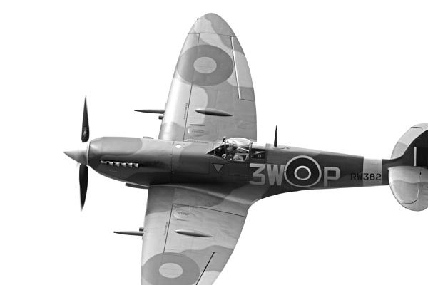 Spitfire Portrait by lawbert