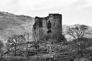 Dolbadarn Castle Snowdonia by stu8