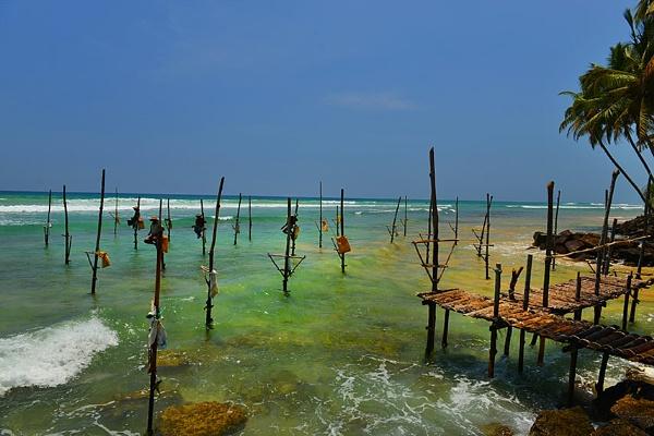 srilanka by Dismorfic