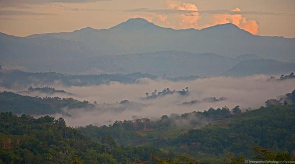 Dawn mists near Mount Kinabalu, Sabah, Borneo, Malaysia by brian17302