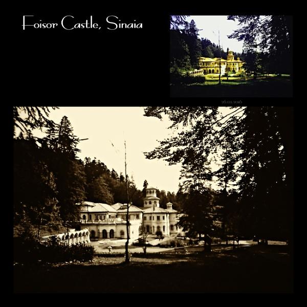 Foisor Castle. 3 by gss