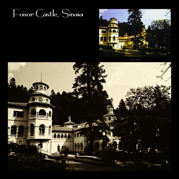Foisor Castle. 4 by gss