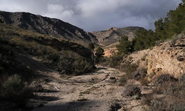 Mountain Rambla by jdenman