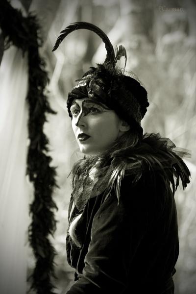 Crow by PCarman