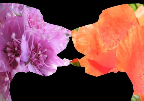 Flower dog portrait by Mototaur
