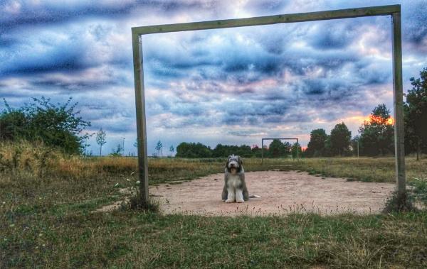 Goalie by BelloBaer