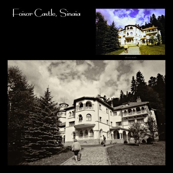 Foisor Castle. 5 by gss