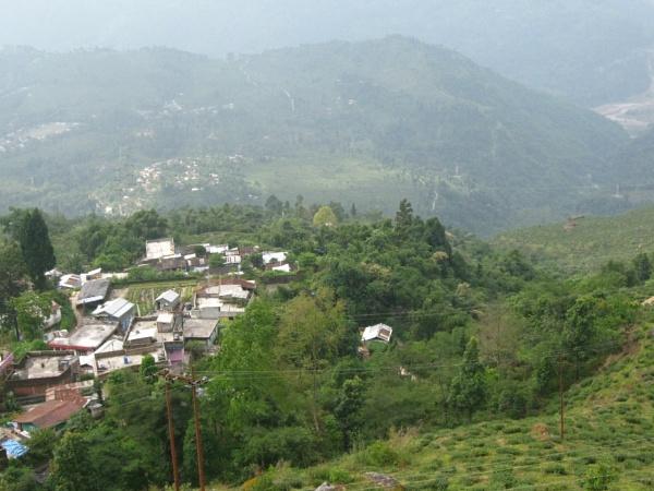 beauty hill