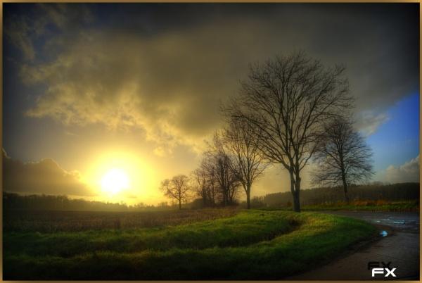 Blinded by the Sun by FernandoJames