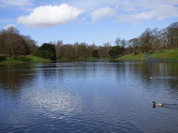 Sefton Park Lake Liverpool UK