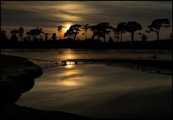 Norfolk Sundown. by Niknut