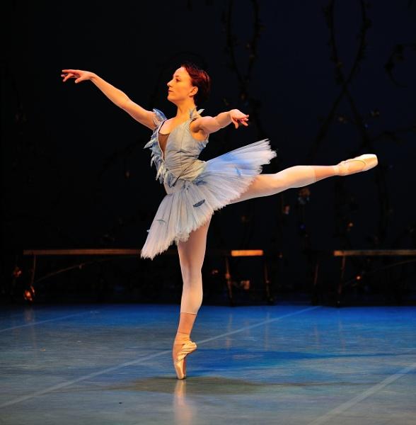 Annelie Liliemark as the Blue Bird by DouglasMorley