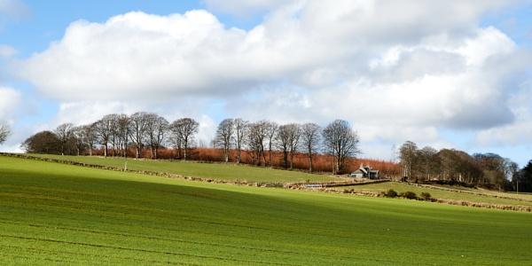 Landscape, Dunecht Estate by nrzam