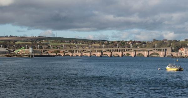 Berwick Bridges by wrighty76