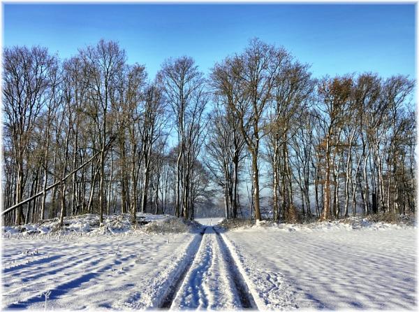 Peel - North Rhine-Westphalia by dukes_jewel