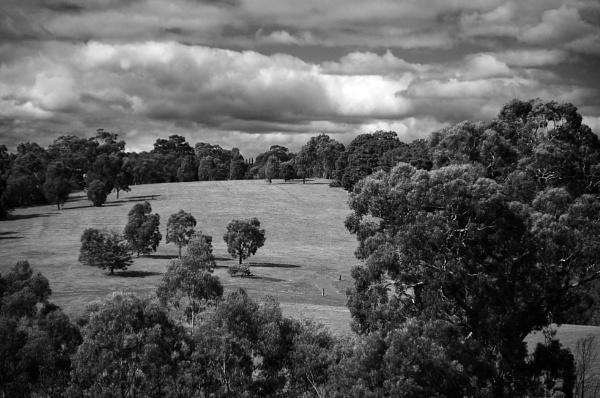 Ruffeys Park Melbourne Australia by Regbaron
