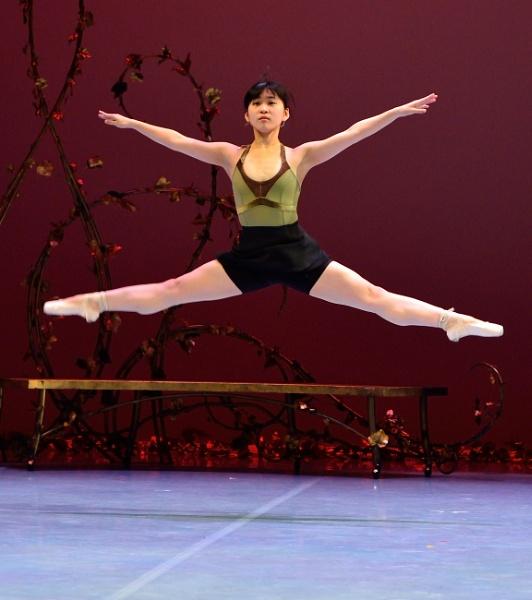 Momoka Matsui performs as the Humming Bird by DouglasMorley